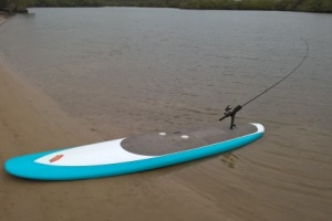 Power Boards Fishing SUP image